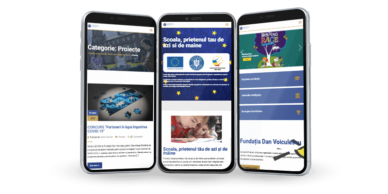 Fundatia Dan Voiculescu responsive site